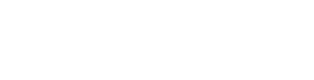 DriveSafe Online®